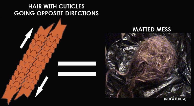Cuticlematting